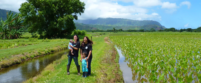Kauai Grown Farmers & Ranchers